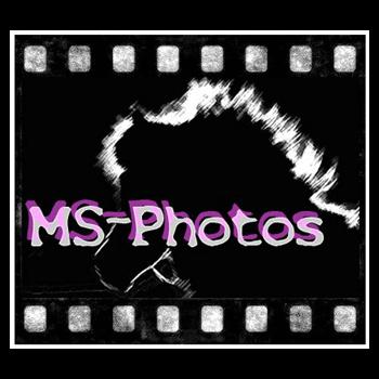 MS-Photos