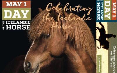 Nemzetközi Izlandi Ló nap a TikTok-on