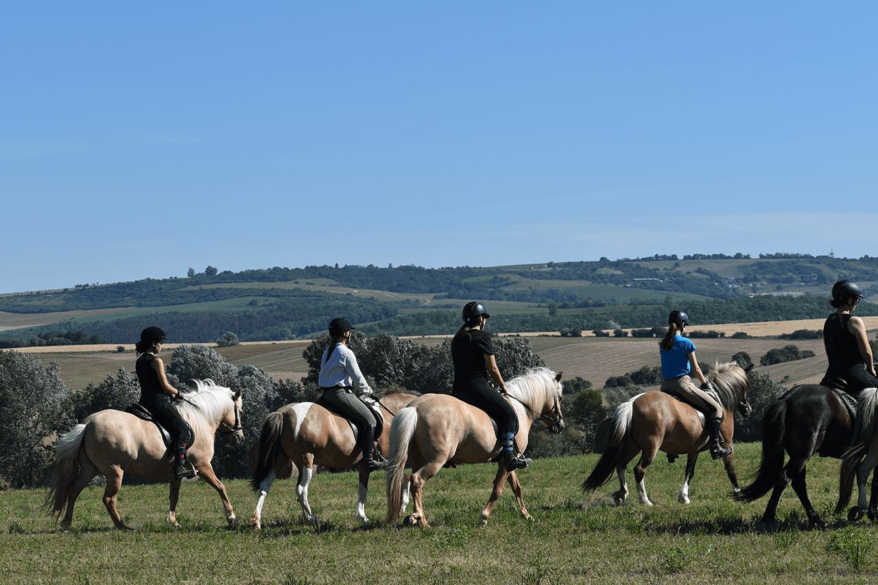 Szabadidős lovaglás